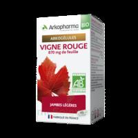 Arkogélules Vigne Rouge Bio Gélules Fl/45 à CHALON SUR SAÔNE