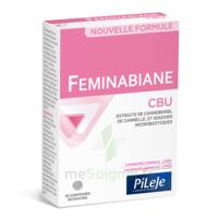 Pileje Feminabiane Cbu 30 Comprimés Bicouches à CHALON SUR SAÔNE