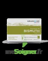 GRANIONS DE BISMUTH 2 mg/2 ml S buv 10Amp/2ml à CHALON SUR SAÔNE