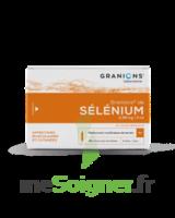 GRANIONS DE SELENIUM 0,96 mg/2 ml S buv 30Amp/2ml à CHALON SUR SAÔNE