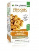Arkogélules Fenugrec Bio Gélules Fl/40 à CHALON SUR SAÔNE