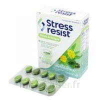 Stress Resist Comprimés Stress & fatigue B/30 à CHALON SUR SAÔNE