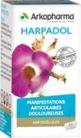 ARKOGELULES HARPAGOPHYTON Gélules Fl/150 à CHALON SUR SAÔNE