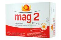 Mag 2 122 Mg S Buv En Ampoule Sans Sucre édulcoré à La Saccharine Sodique 30amp/10ml à CHALON SUR SAÔNE