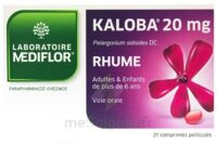KALOBA 20 mg Comprimé pelliculé Plq/21 à CHALON SUR SAÔNE