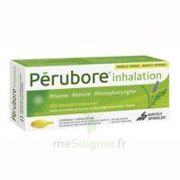 PERUBORE Caps inhalation par vapeur inhalation Plq/15 à CHALON SUR SAÔNE