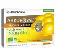 Arkoroyal Gelée Royale Bio 1500 Mg Solution Buvable 20 Ampoules/10ml à CHALON SUR SAÔNE