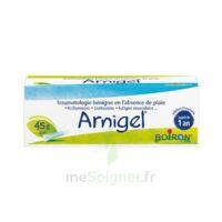 Boiron Arnigel Gel T(alumino-plastique)/45g à CHALON SUR SAÔNE