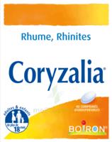 Boiron Coryzalia Comprimés Orodispersibles à CHALON SUR SAÔNE