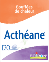 Boiron Acthéane Comprimés B/120 à CHALON SUR SAÔNE