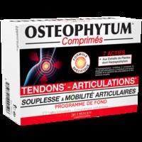 OSTEOPHYTUM Comprimés renfort et mobilité articulaire B/60 à CHALON SUR SAÔNE